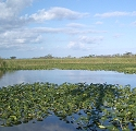 Everglades Nationalpark